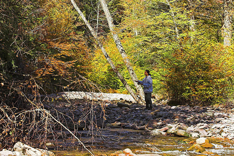 Lena fishing a nice hole. From the Mystery Creek # 23 in New York.