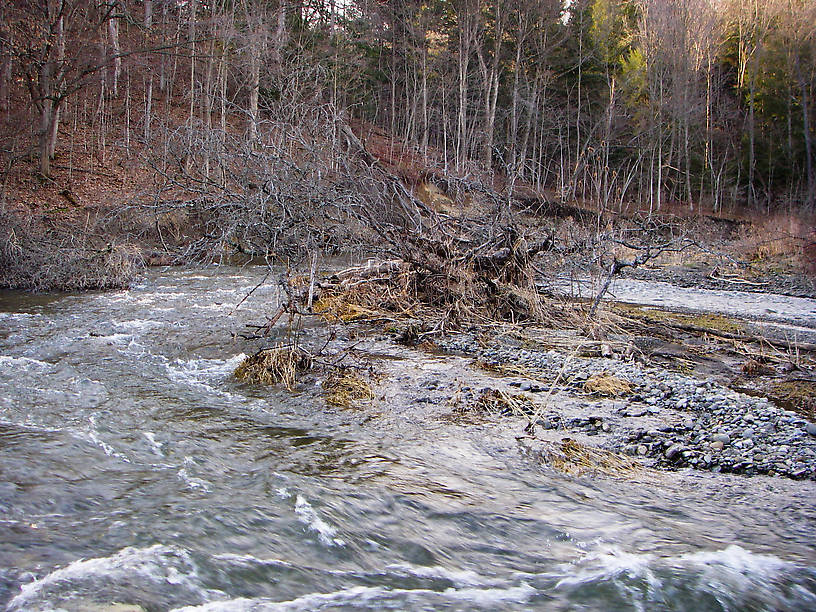 Everything just kind of blends together in this turbulent picture, taken during an early-season skunking on an unfamiliar stretch of river. From Fall Creek in New York.