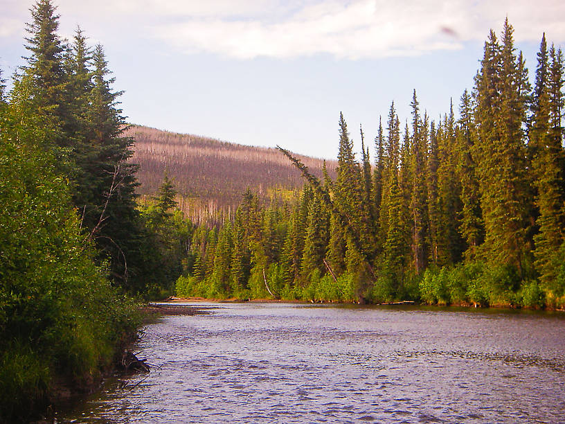 From the Chatanika River in Alaska.