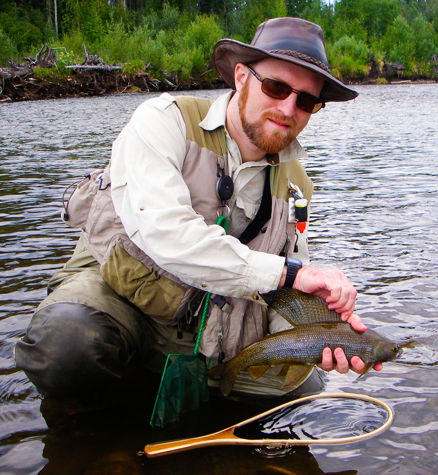 Pretty grayling fins. From the Chena River in Alaska.