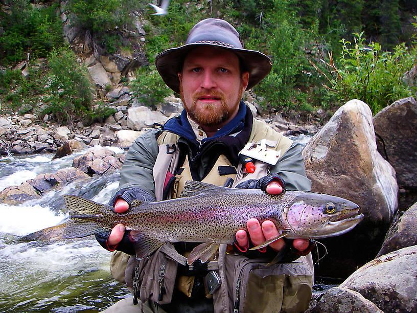 Mean-looking 17-inch rainbow. From the Gulkana River in Alaska.