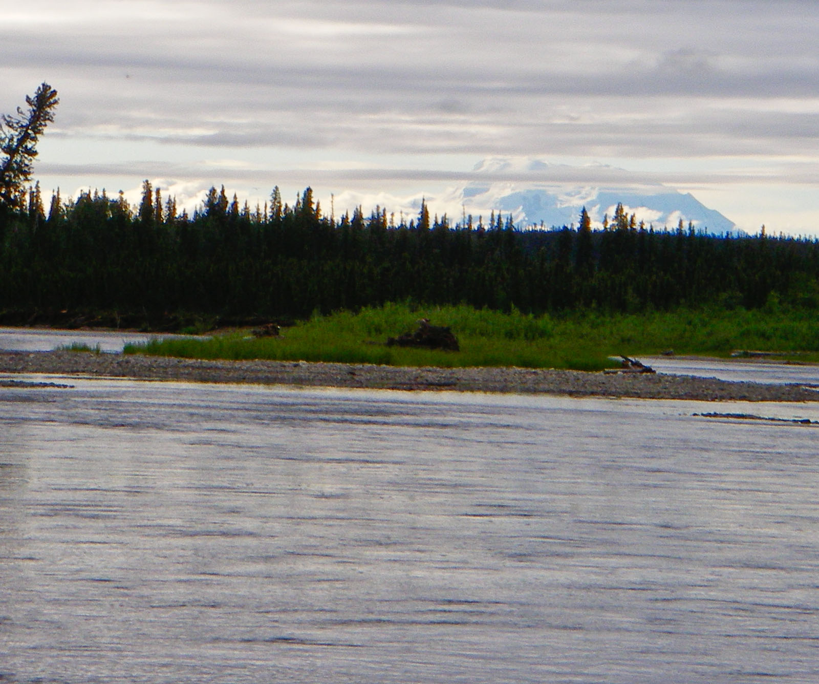This float trip gave us a couple views of the distant peak of Mount Wrangell, an inactive volcano. From the Gulkana River in Alaska.
