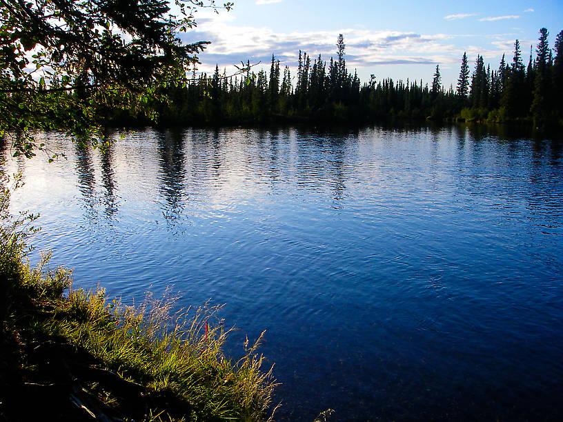 From the Delta Clearwater River in Alaska.