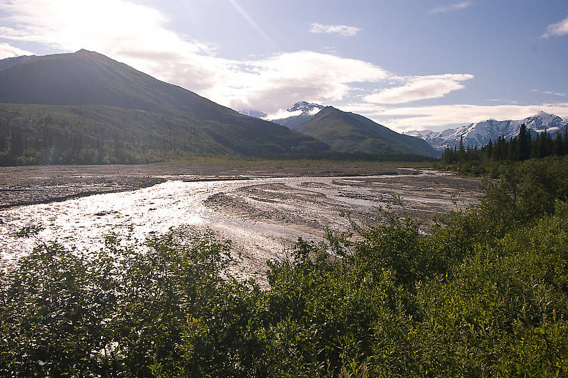 From the Delta River tributary in Alaska.
