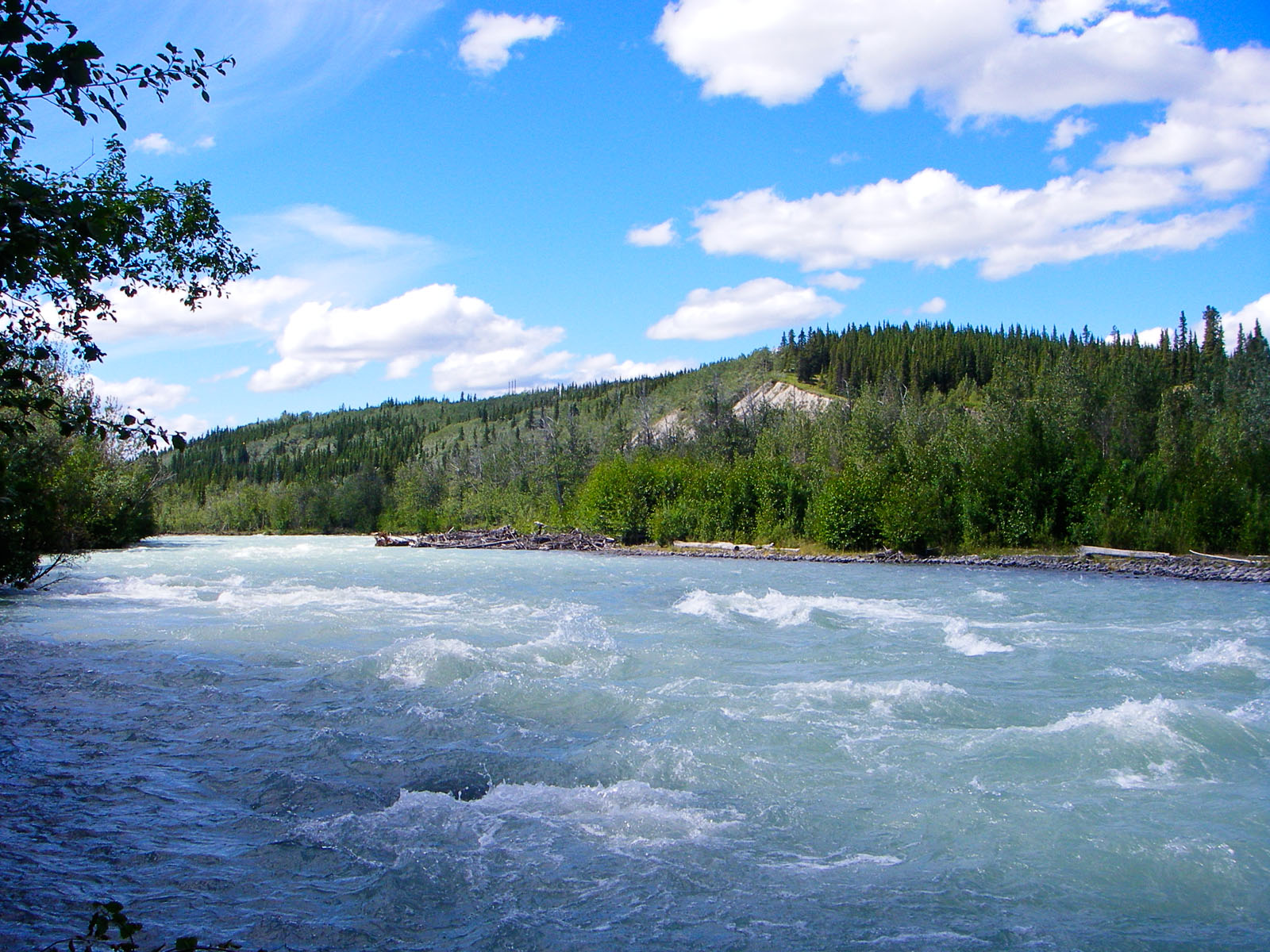 From the Klutina River in Alaska.