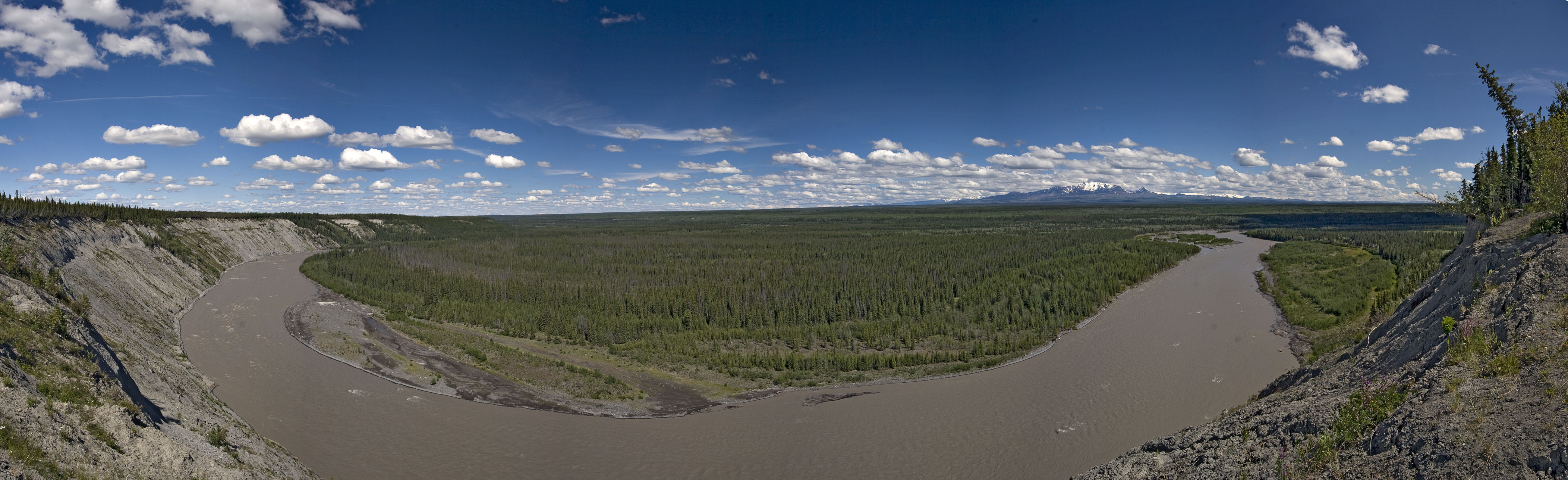 The Copper River is another of Alaska's major glacial drainages, hosting huge salmon runs which spread out more thinly into its clearwater tributaries to spawn.  