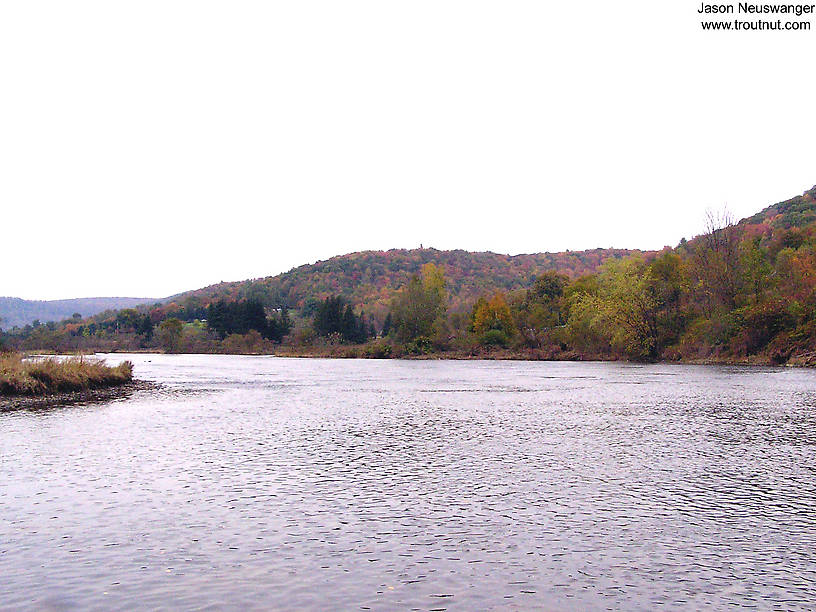 Here's a large, famous Eastern trout stream during a weekend of slow fishing in the fall. From the West Branch of the Delaware River in New York.