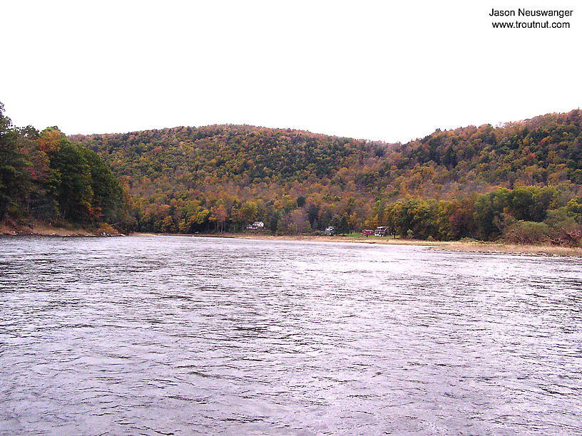 From the Delaware River in New York.