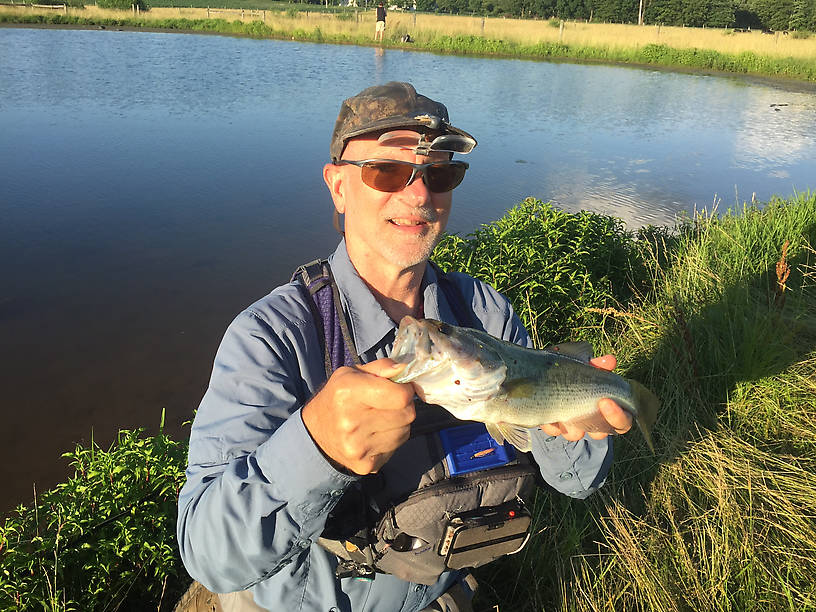 A farm pond bass, caught on a Whitlock hare water pup.