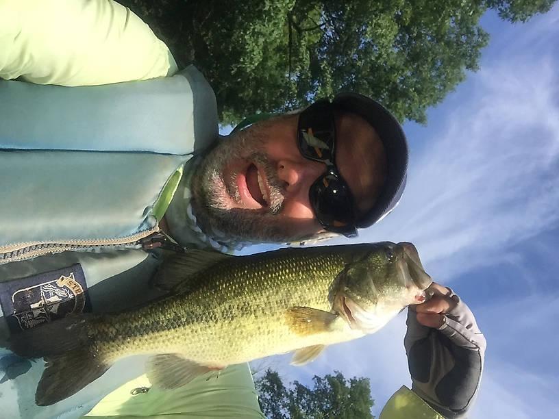 Maiden Creek bass.