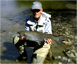 Steelhead Alley - OH & PA (by Wbranch in Fishing Reports)