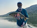 Montana: The Missouri (by Martinlf in Fishing Reports)