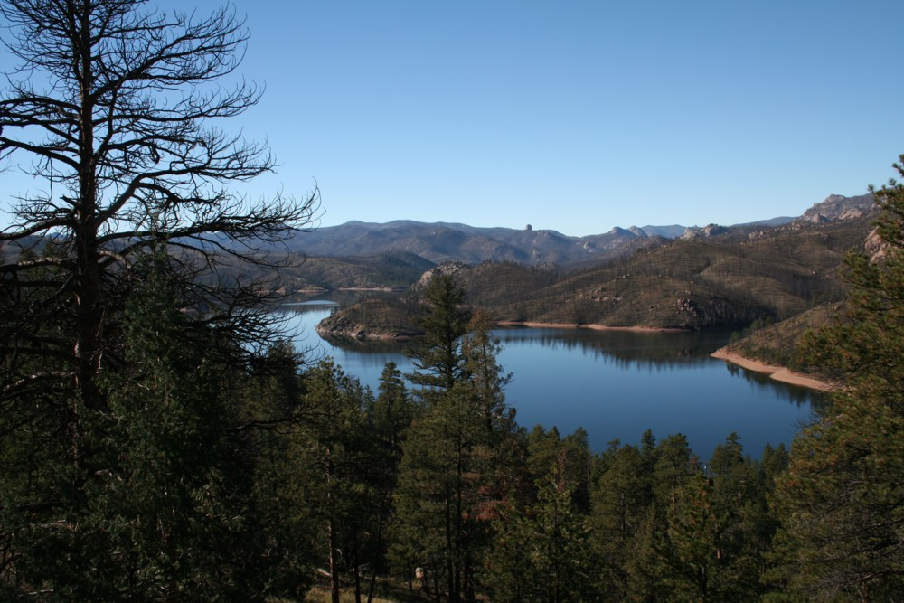 This is a picture of Cheesman Resevoir ther are burnt trees as far as the eye can see from the Hayman Fire