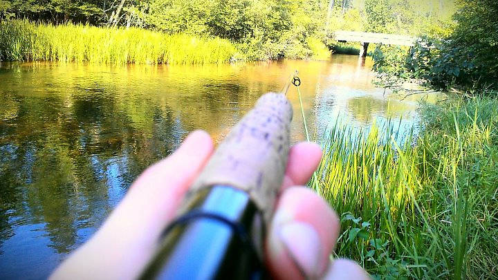 Chasing finger long rainbows on the Little Manistee