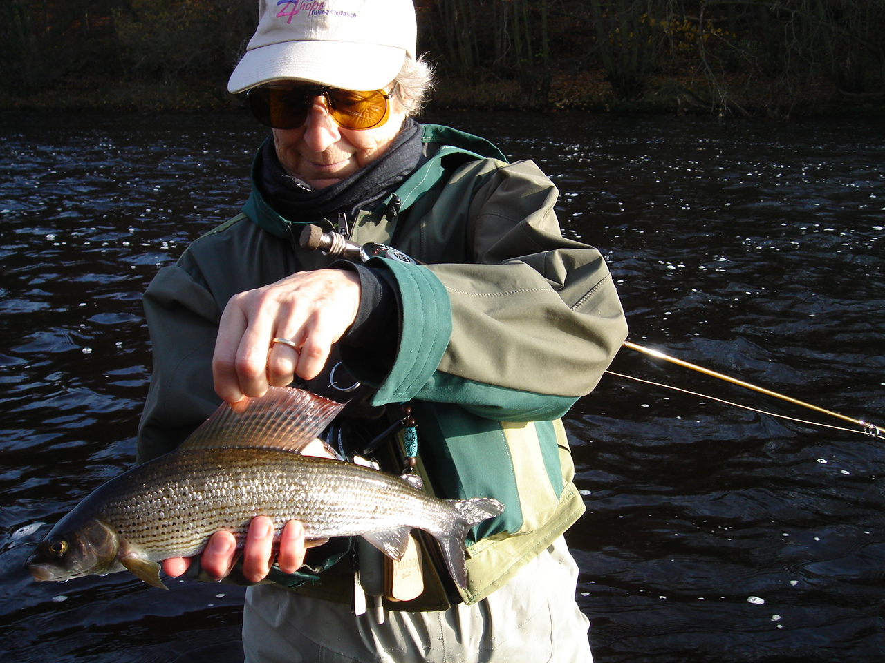 sunny morning, handsome fish--life is good! River Ure at Masham.