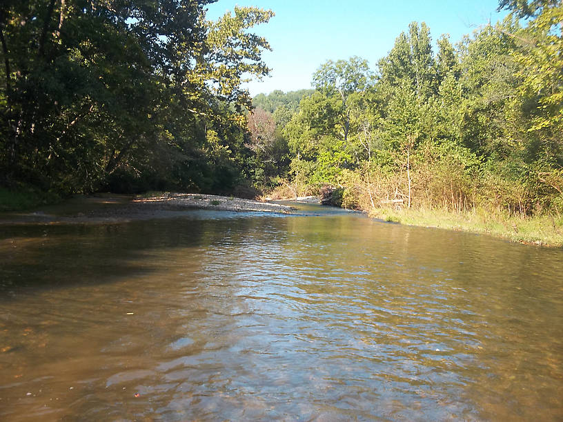 The Blue Ribbon water on the Current River. It is full of brown trout, but midday during a summer heat wave isn't the best time to find them.