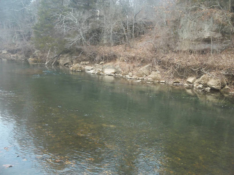 Not a great quality pic, but the possibility of finding a big brown in this pool has crossed the mind of more than one angler. I know its full of rainbows.