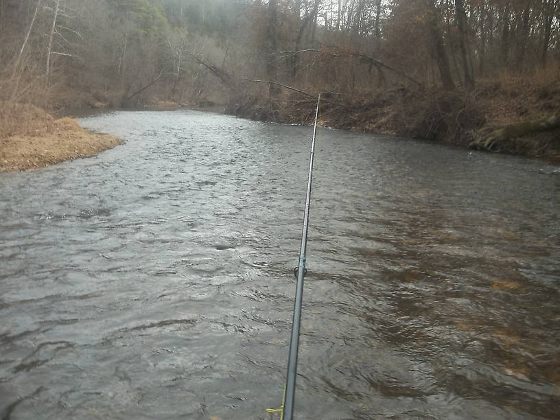 A nice riffle on the Current River. It's usually good for a rainbow or two, and the beautiful, pine covered hill that rises above it makes it an ideal place to wet a line .