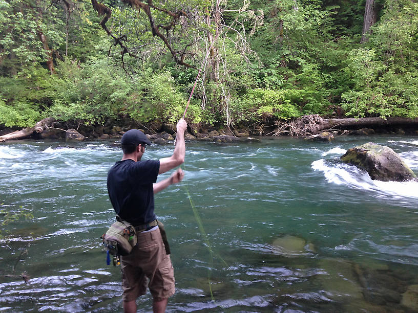 Fly fishing the rogue river for Rogue river fishing report