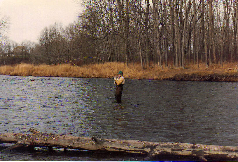 Fighting a big steelhead! You can see a stringer on the log in the water in the foreground. There is a 10# hen on the stringer.  At the time I was still keeping fish and would cull out bigger fish for smaller, easier to carry, steelhead. The water on the far side was great holding water and there was a deep trough all along that side.