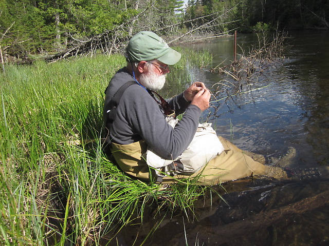 Au Sable River Fishing Report: Combined