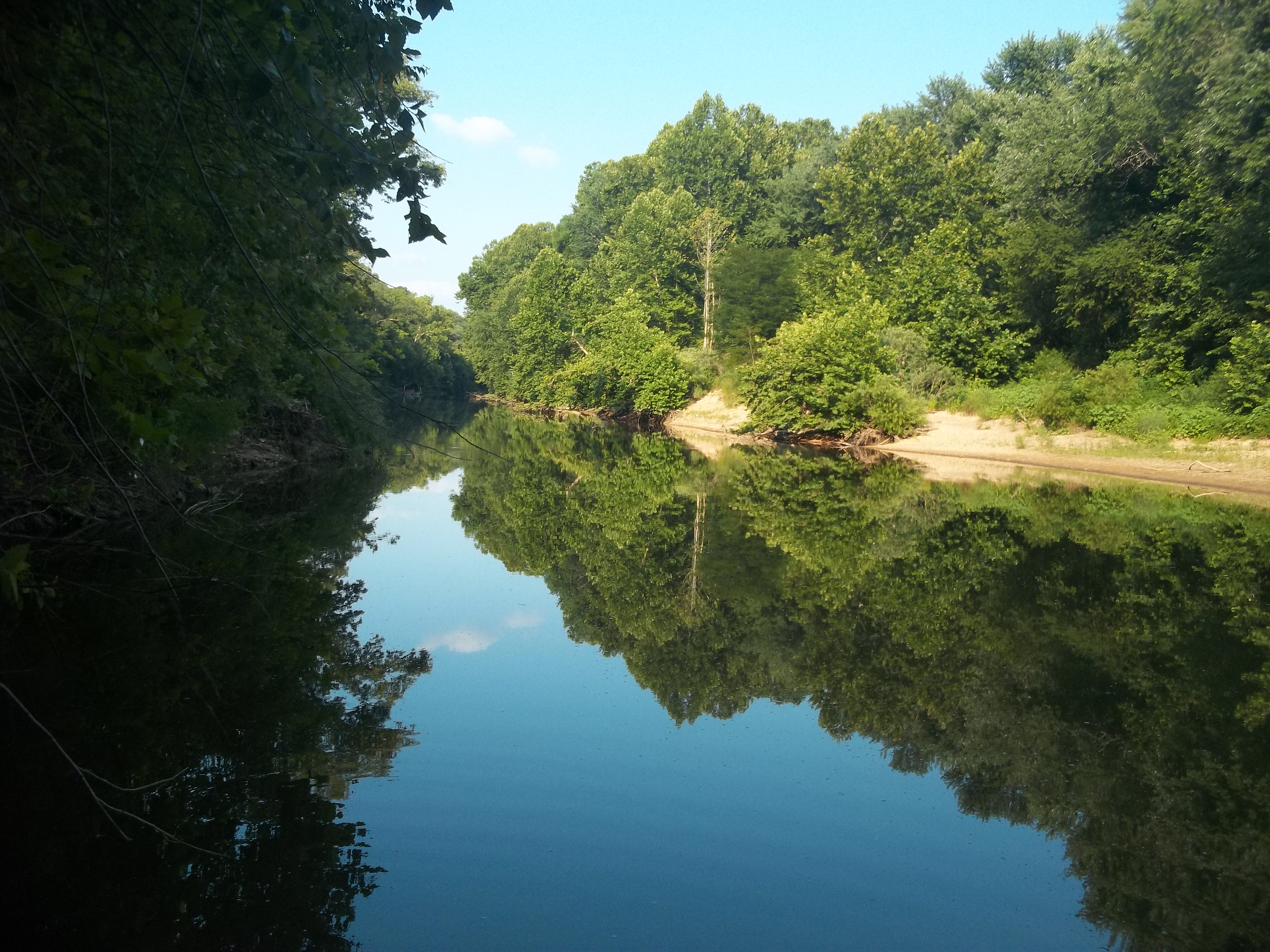 The thick forests of the Ozark foothills line the river on both sides, creating a beautiful setting.