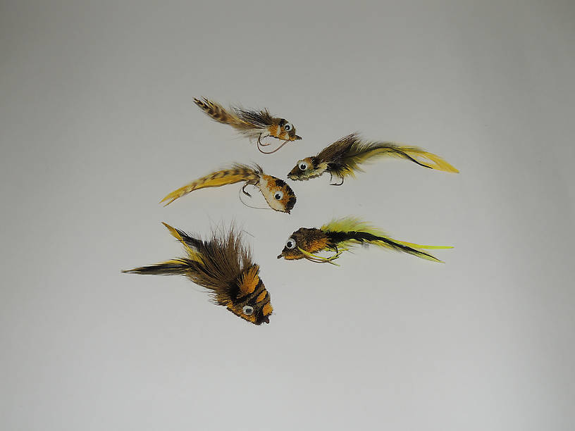 The Frog Gang! Floaters, divers, a real smorgasbord for bass.