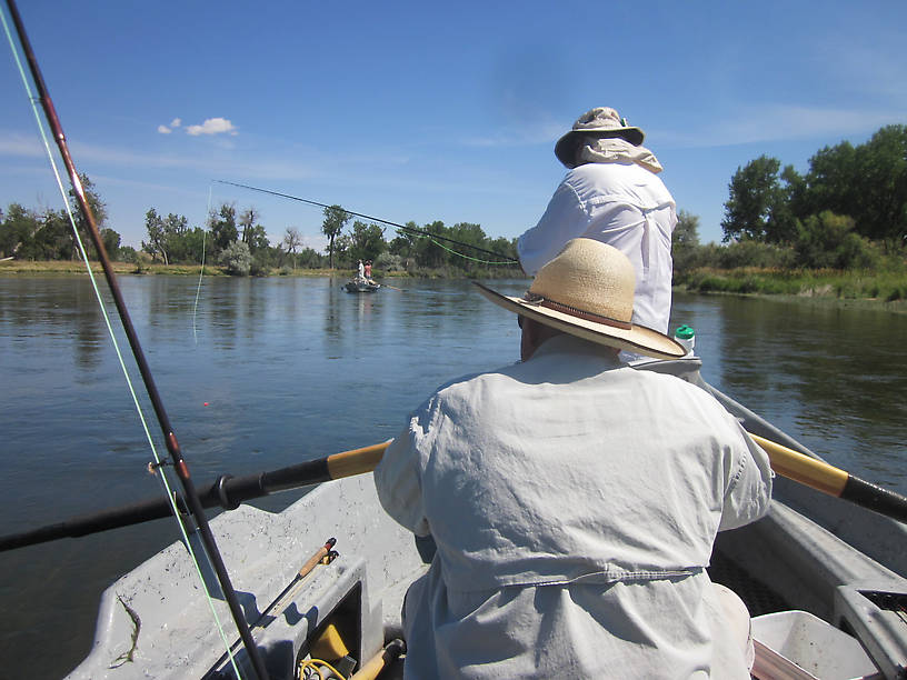 Belated fishing report bighorn river july 30 august 1 2014 for Bighorn river fishing report
