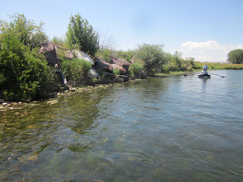 Belated fishing report bighorn river july 30 august 1 2014 for Bighorn river fishing