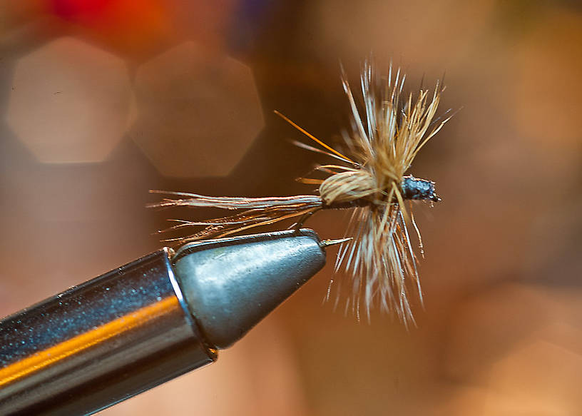 First fly, after 12 years away from the bench.