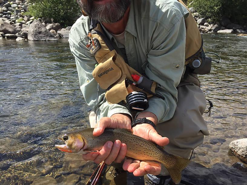 His fish