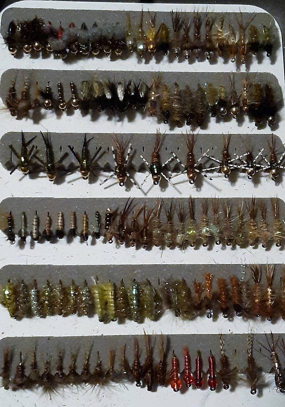PMD emergers, Split back PMD nymphs, hunchback nymphs