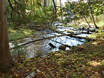 The Coppler Creek canyon - some nice pics from last fall to help you survive the Apocalypse (by Jmd123 in Photography)