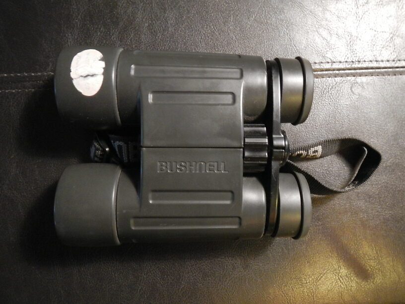 Trusty Bushnell rubber-armored waterproof 10x42s, bought these in 2000 for my Isle Royale trip!