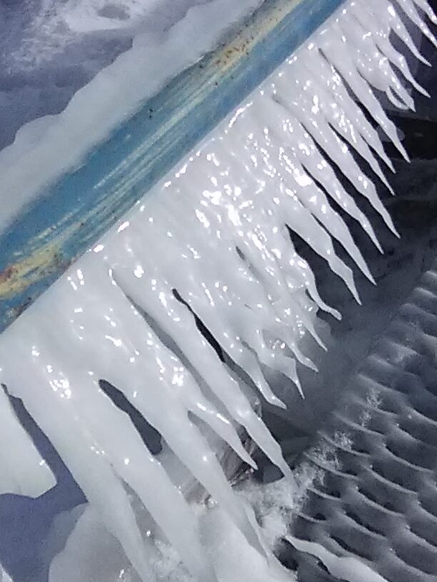 Waxy-looking icicles on the pier...yes it was slippery and yes I was careful!!!