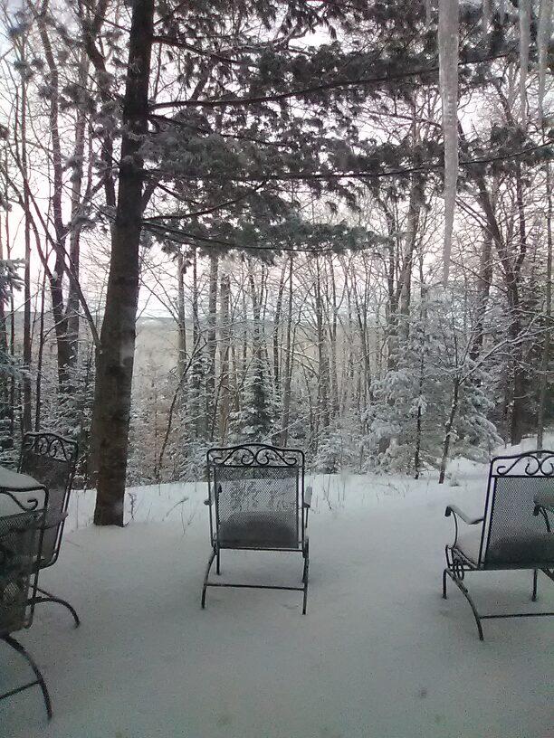 Finally, my backyard