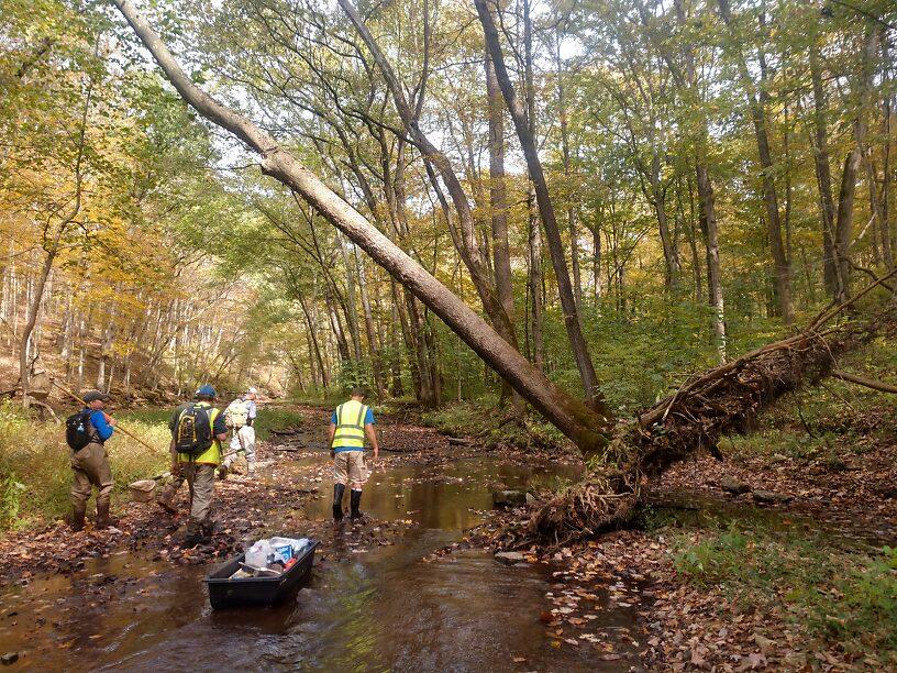 Moving upstream, a good shot of the general habitat