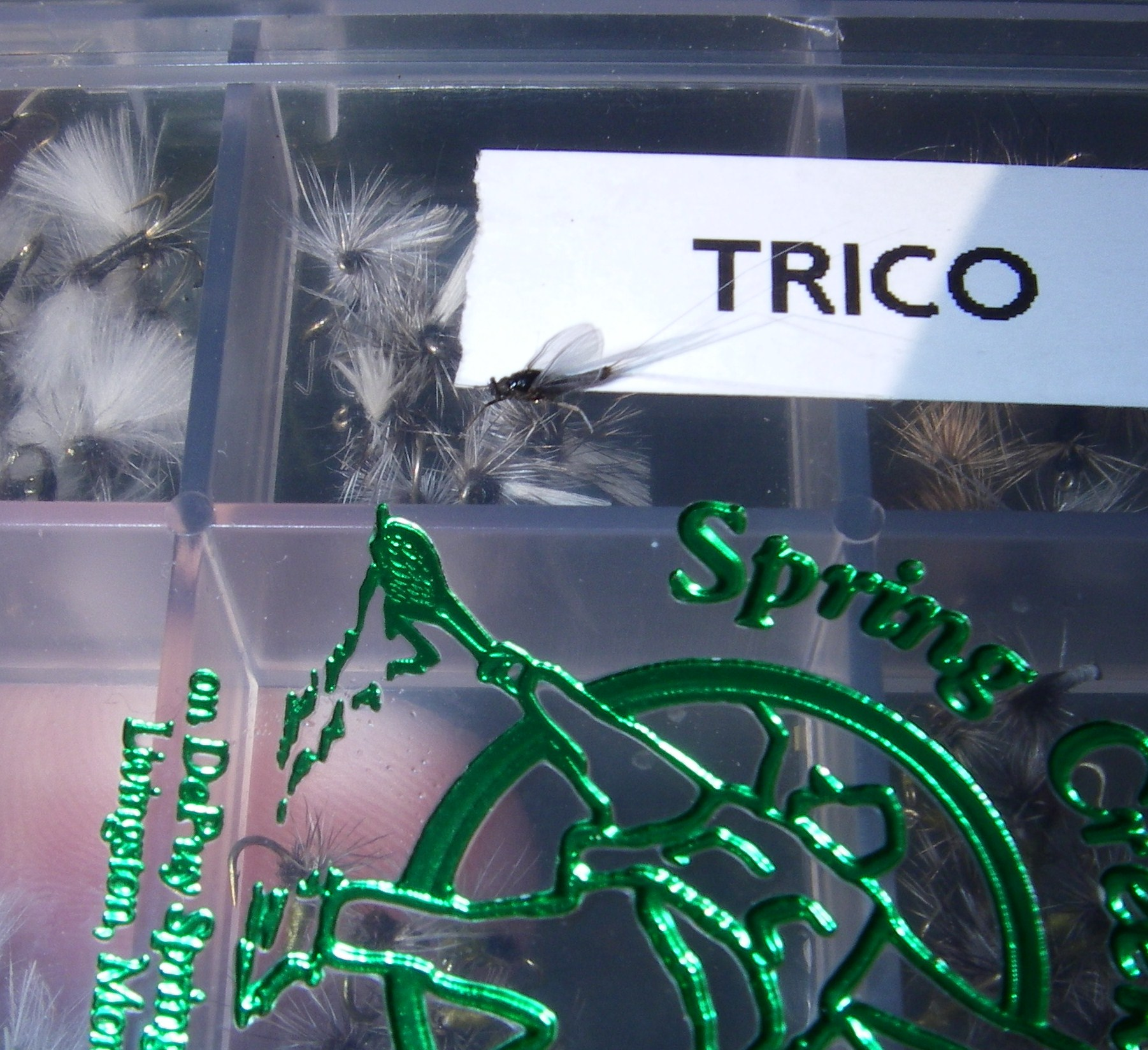 which fly do i need?