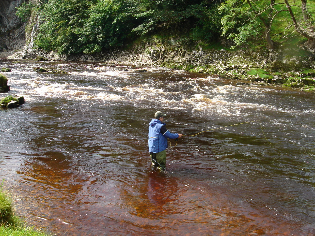 River Wharf below Loup Scar, above Burnsall.  caught a couple of browns, one surely wild.  spent the day Czech Nymphing as the water was a good foot above normal, deep, fast, and peaty.  peaty means a wonderful reddish gold color that made every fish look like a salmon.