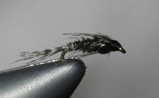 Black ribbing over guinea body.  I've been tying nymphs like these for several years, and they're pretty tricky.  When I finished this particular nymph, I was shocked at how good it looked.  I said to myself, &quot;That's the best nymph you've ever tied.&quot;  All the materials did exactly what I wanted them to do.  The picture doesn't do it justice, in my opinion.