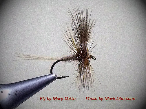 LIGHT CAHILL Dry Fly Trout grayling fly Fishing flies by Dragonflies